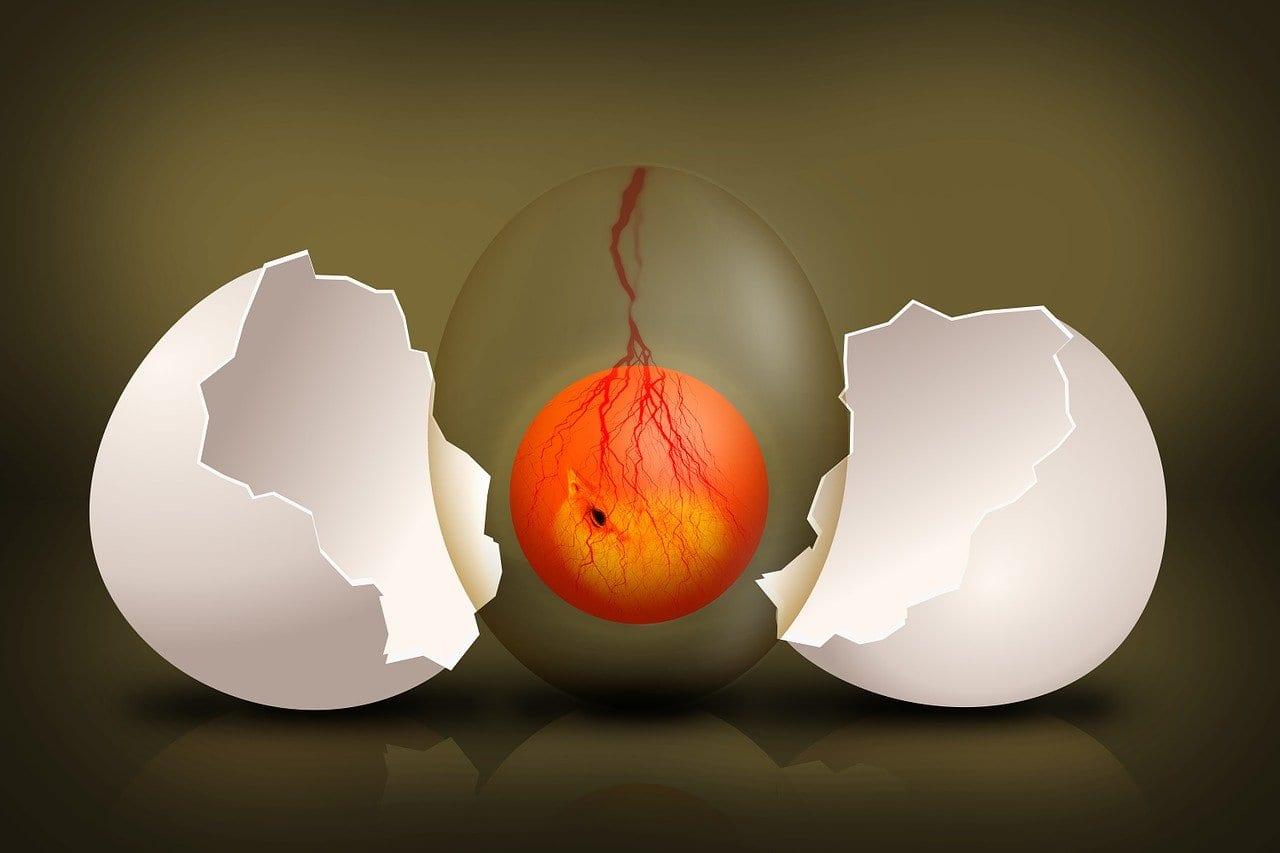 pregatirea endometrului in FIV